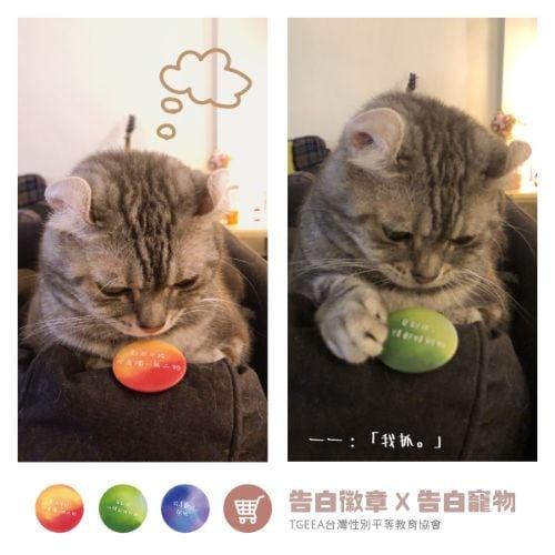 告白徽章彩虹徽章寵物徽章